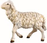 4355 Schaf gehend